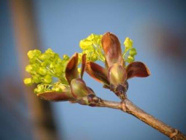 知っておきたい!「春の幸せ曲線」に乗り遅れないコツ
