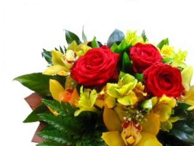 Happy Mother's Day 2014 ‐三人の「母」への手紙