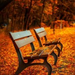 【名曲】さだまさしの「October ~リリー・カサブランカ~」を10月になると思い出す。