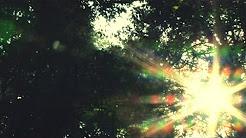 今さらながら宇多田ヒカルの「桜流し」と「道」が名曲すぎる